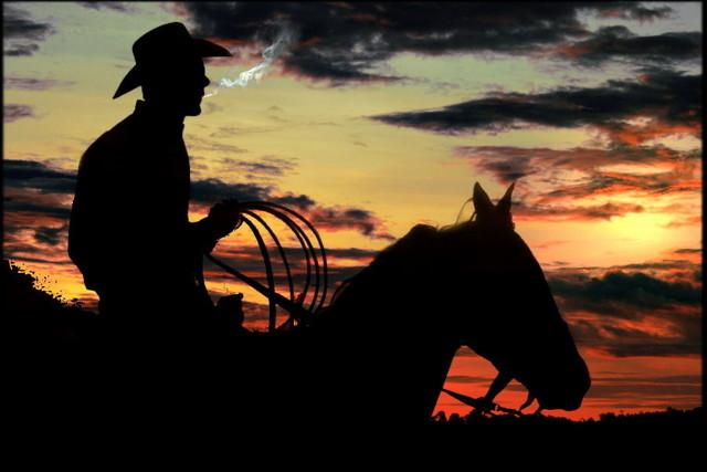 the boss cowboy